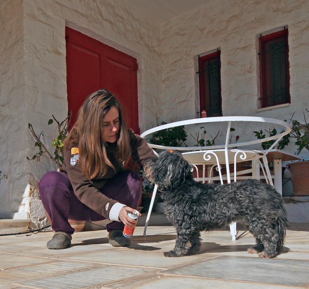 Photo courtesy of Carlo Raciti   www.carloraciti.com