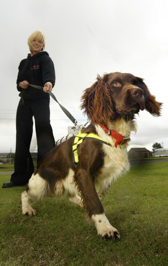 Ο Twister, εν ώρα εργασίας, στην αεροπορική βάση RAF Sealand της Βόρειας Ουαλίας.
