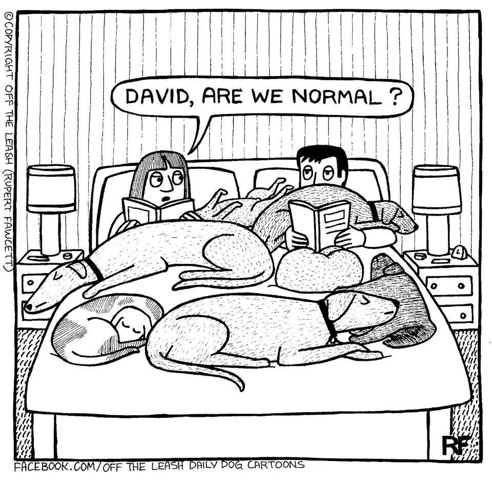 - Είμαστε, λες, φυσιολογικοί; (Υπέροχο σκίτσο του Rupert Faucett)