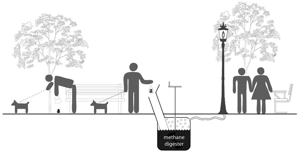 6b6c7253a8b2 Πώς τα σκυλίσια περιττώματα μετατρέπονται σε μεθάνιο