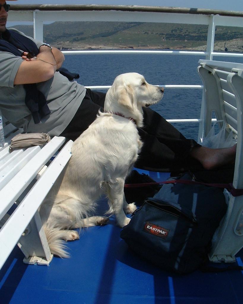 tekila ferry boat