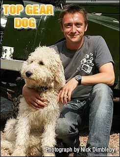 Ο σκύλος του Top Gear πρέπει να είναι το πιο διάσημο Λαμπραντούντλ, Κατοικεί με τον