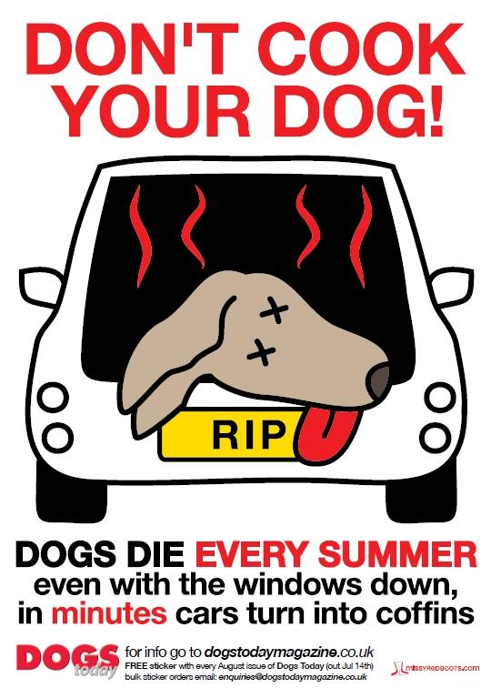 «Μην ψήνεις το σκύλο σου. Σκύλοι πεθαίνουν κάθε καλοκαίρι. Ακόμα και με ανοιχτά παράθυρα. Σε λίγα λεπτά τα αυτοκίνητα μετατρέπονται σε φέρετρα» γράφει η αφίσα του περιοδικού Dogs Today.