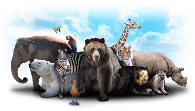 zoo www