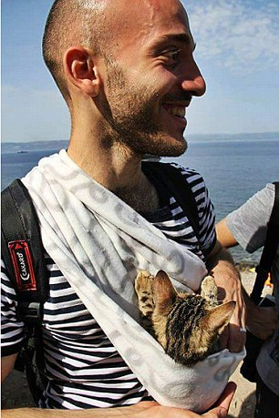 syrian with kitten