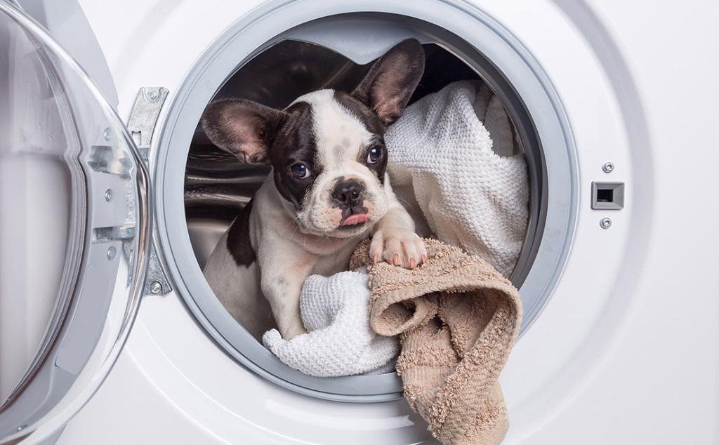 sw laundry