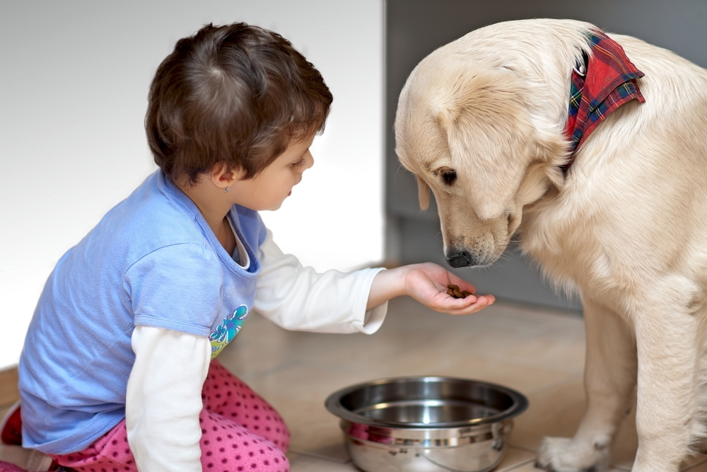 kid dog2