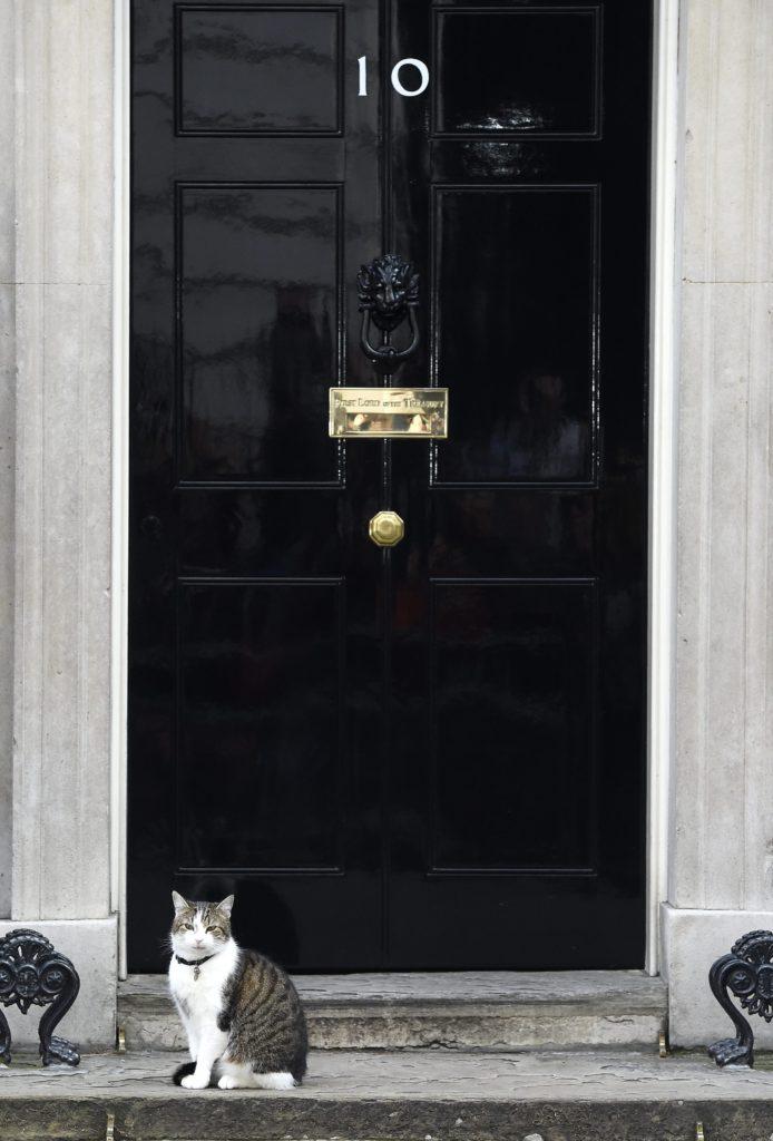 Ο Λάρι στέκεται έξω από το νούμερο 10 της Downing Street. Να μείνω ή να φύγω, αναρωτιέται.. EPA/FACUNDO ARRIZABALAGA